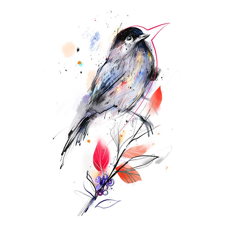 motiv-boruvkovy-ptacek-bilaj