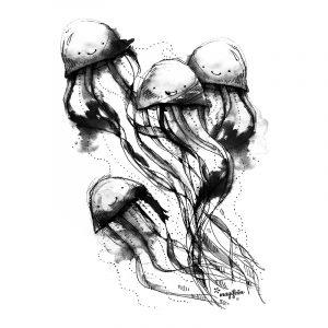 motiv-meduzky-cerna