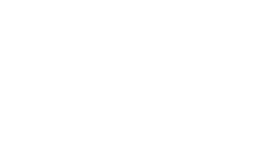 Magifešn